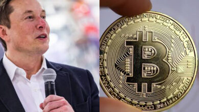 Photo of Elon Musk makes Bitcoin witness it's sharpest drop of 20%
